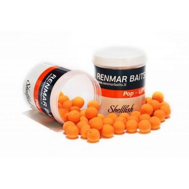 Renmar Baits pop - ups...